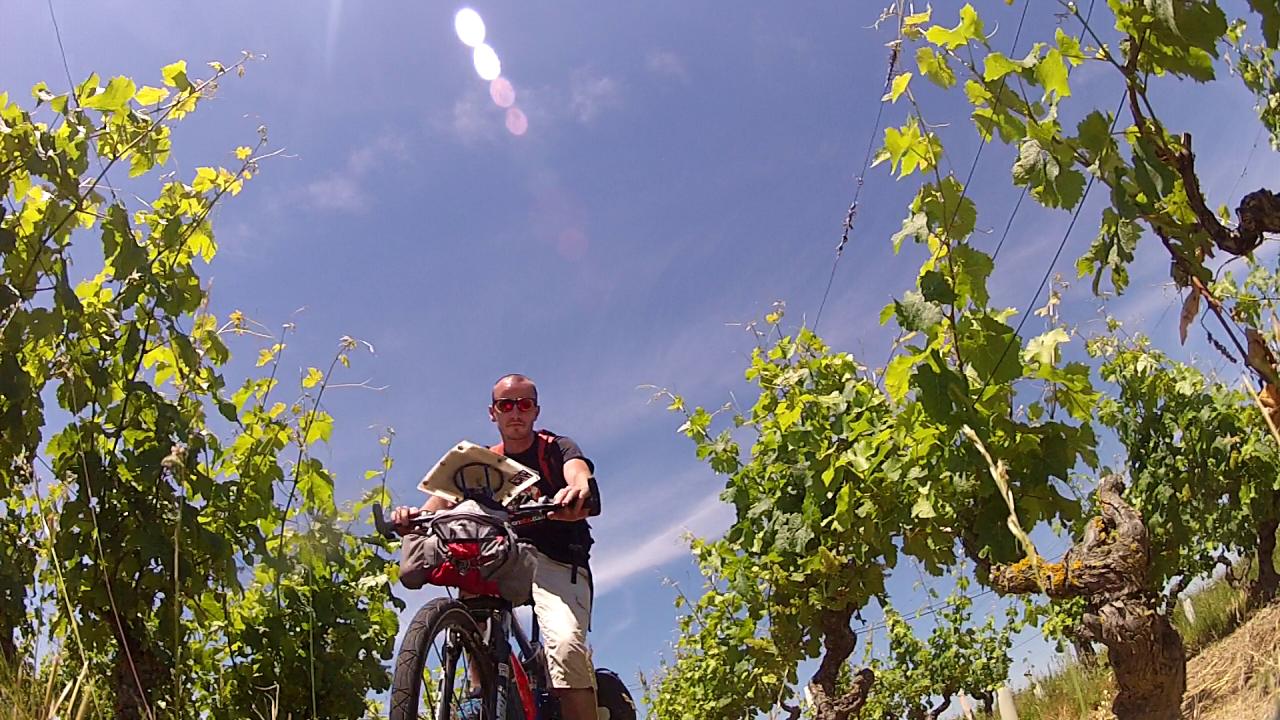 Vélo dans le Muscadet